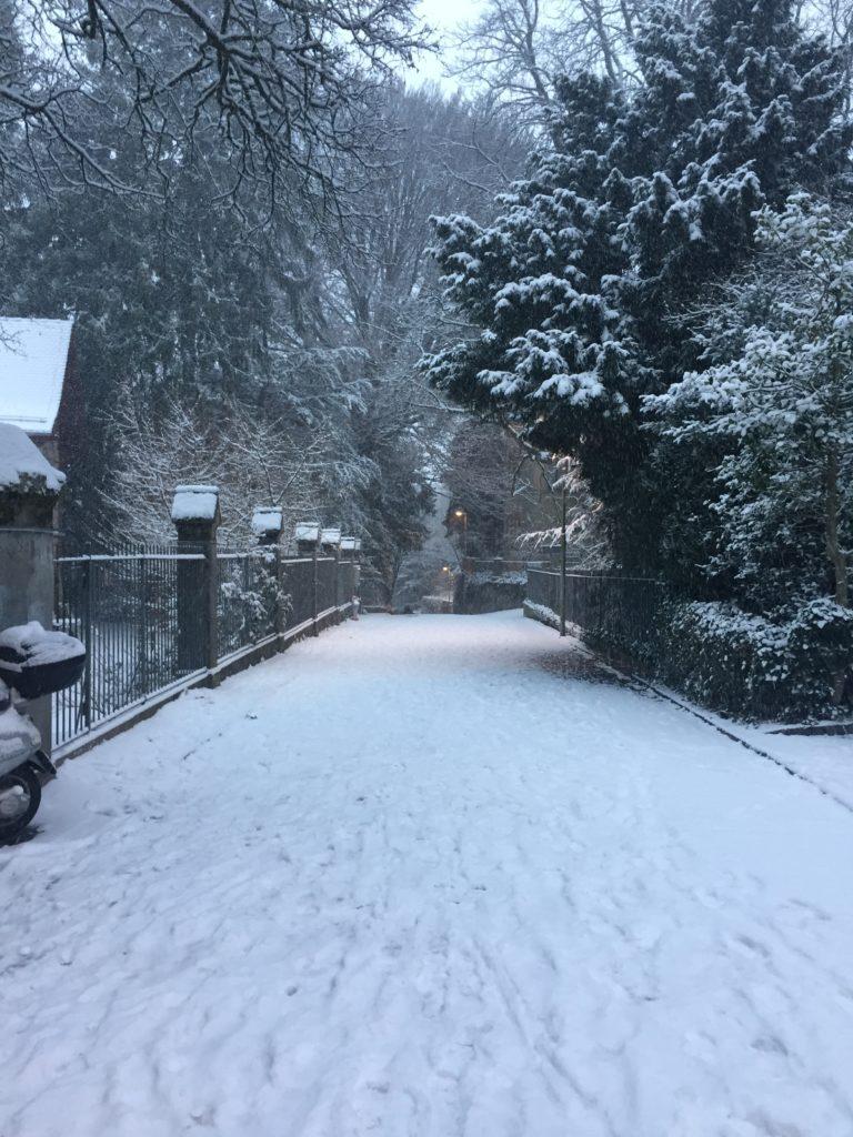 Цюрих в снегу