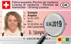 Вождение. Водительские права